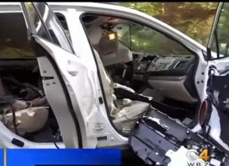 Αρκούδα έκανε φύλλο και φτερό ένα Subaru (+video)