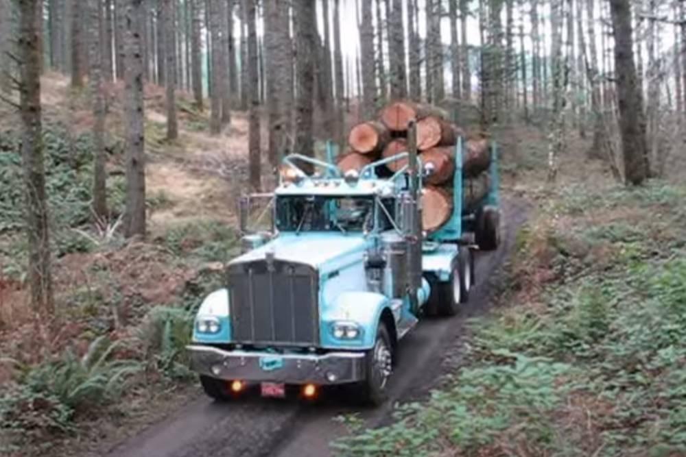 Νταλίκα 47 ετών κουβαλάει με άνεση τόνους ξυλείας!