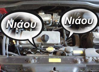 Τι κάνει νιάου νιάου στο… αυτοκίνητο;